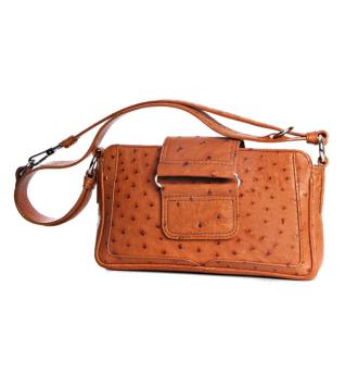 The B015 Bag in Ostrich