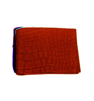 S027 Wallet in Crocodile