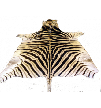 Zebra Skins | Zebra Rug | Super A-Grade | Burchell Zebra Hide